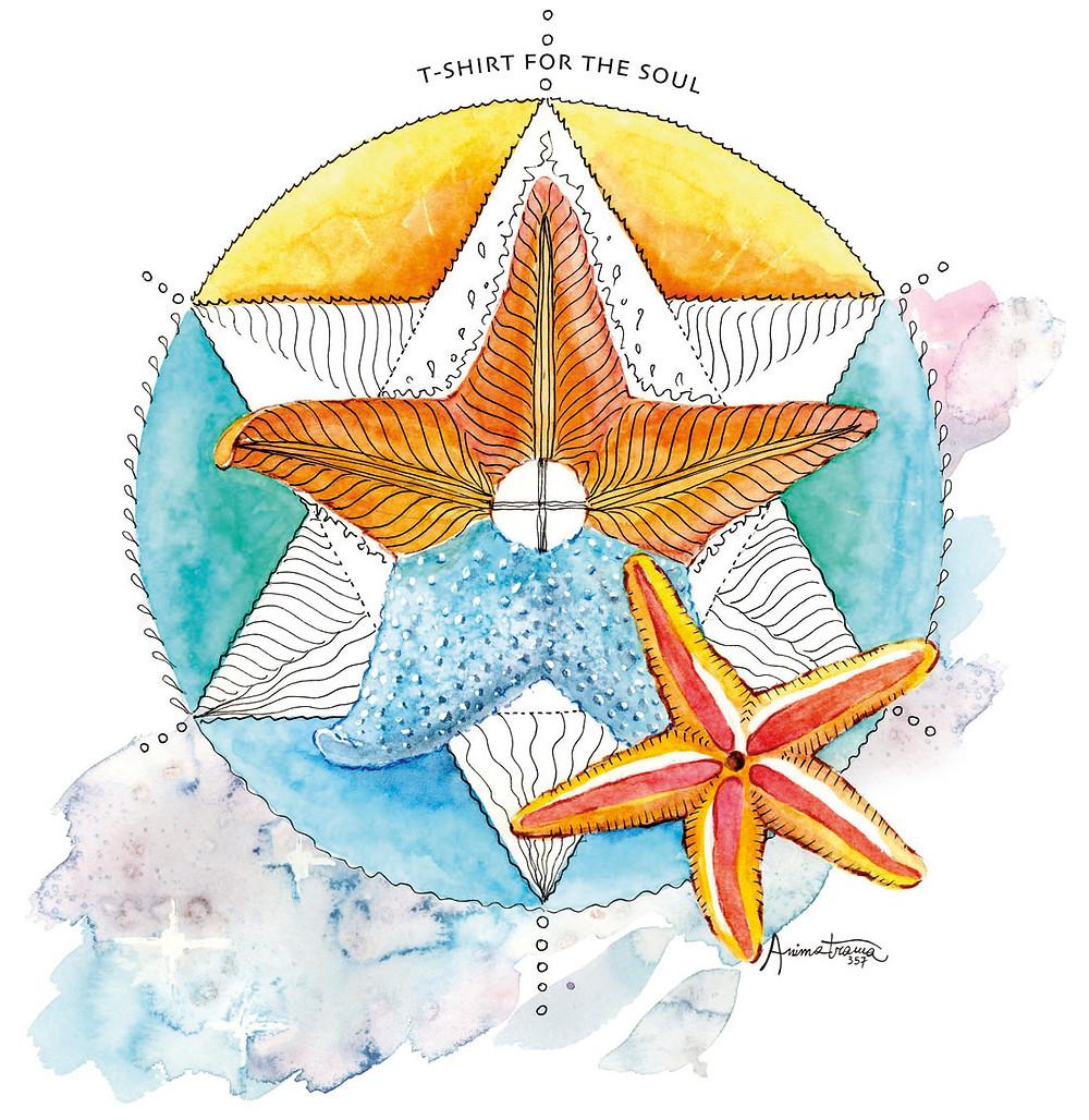 Disegno Stella Marina
