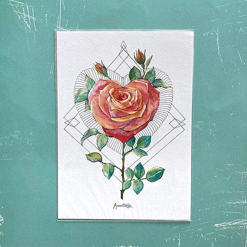 Stampa Rosa/Cuore