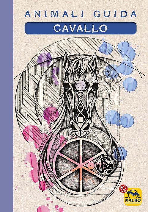 Quaderno Animali Guida - Cavallo