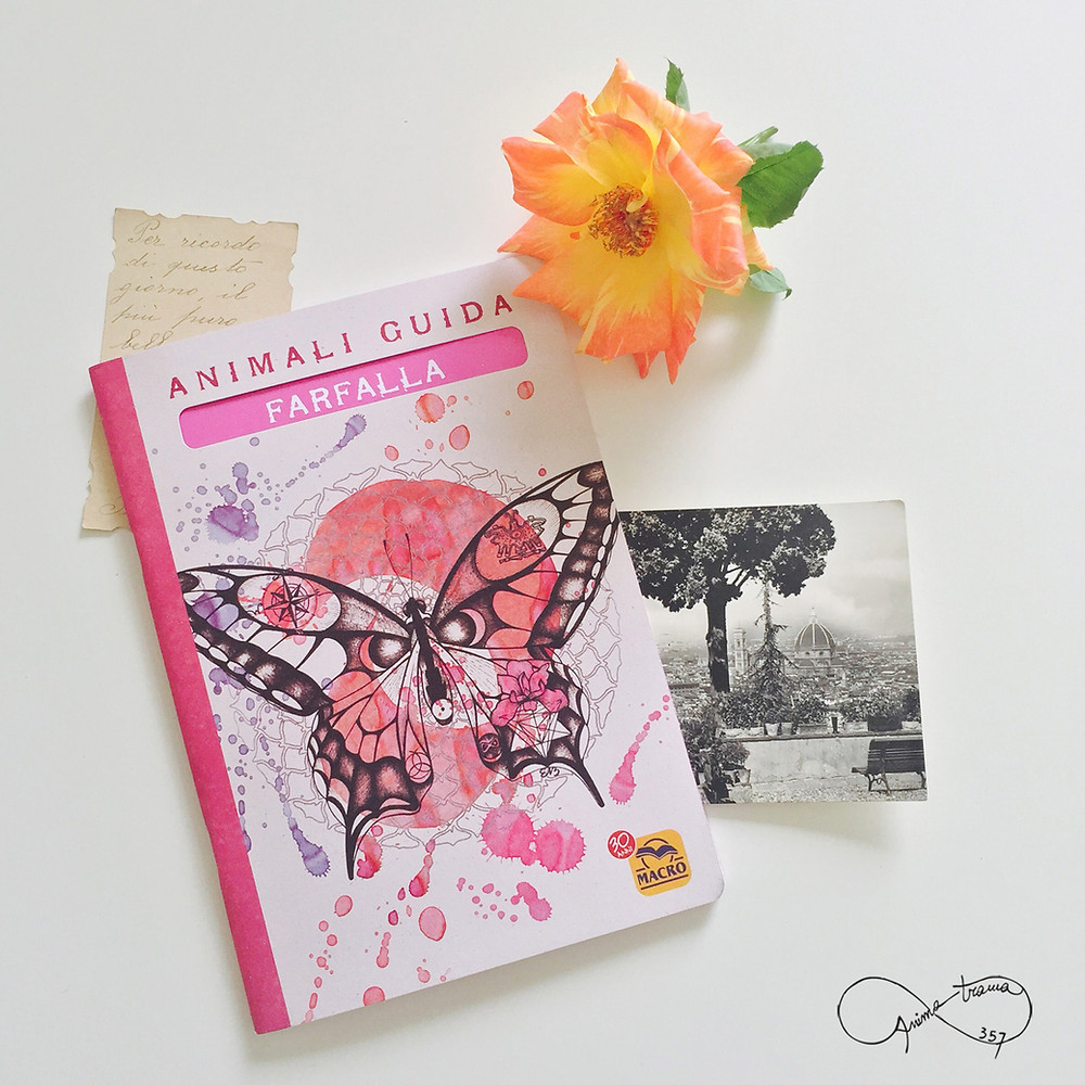Quaderno Animali Guida - Farfalla