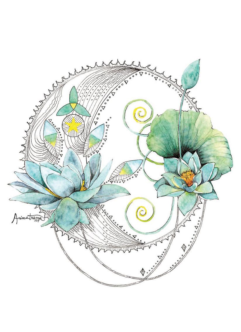 Luna e fiore di Loto, disegno ad acquerello e china