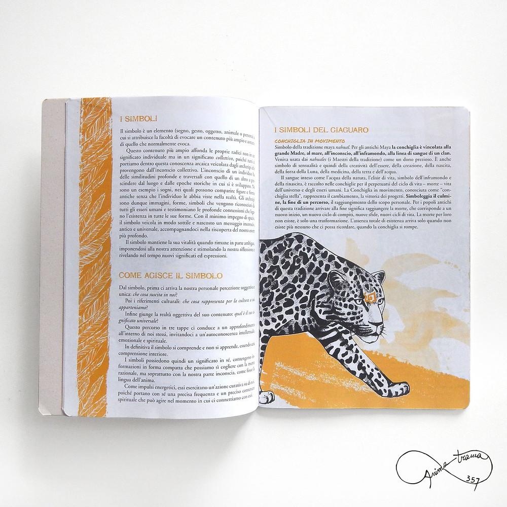 Pagine interne del quaderno del Giaguaro