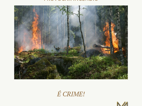 PROVOCAR INCÊNDIO É CRIME!