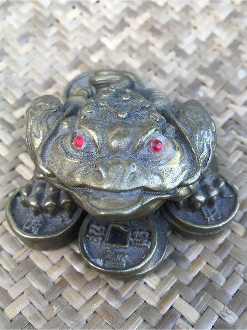 Frog: Feng Shui accessory for generating luck