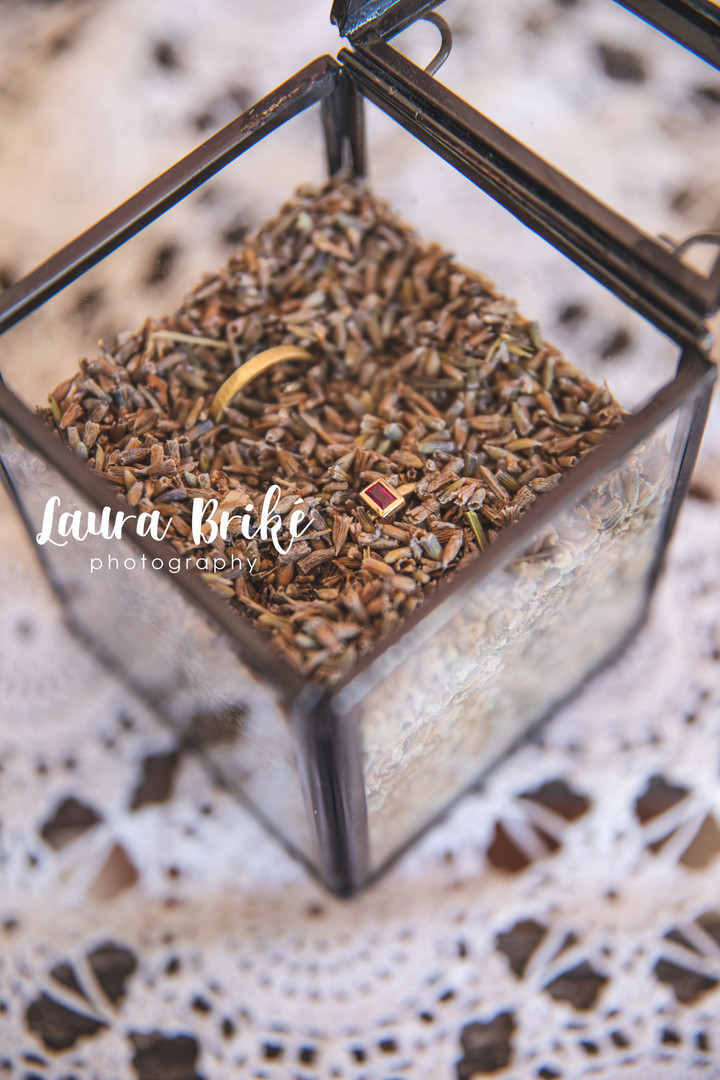 Laura Briké Photography