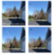 quick step extension ladder multi 2 pics