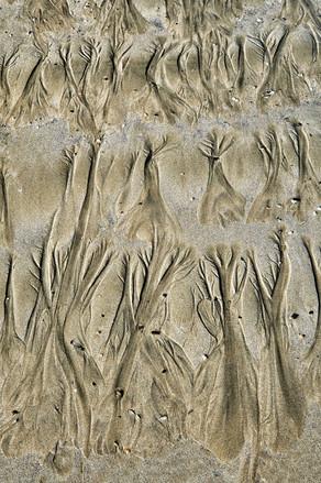 Sand Pattern 12