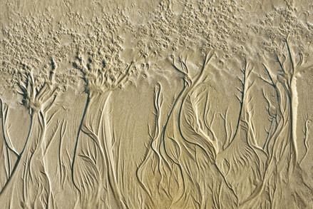 Sand Pattern 3