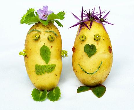 The Potato Heads.jpg