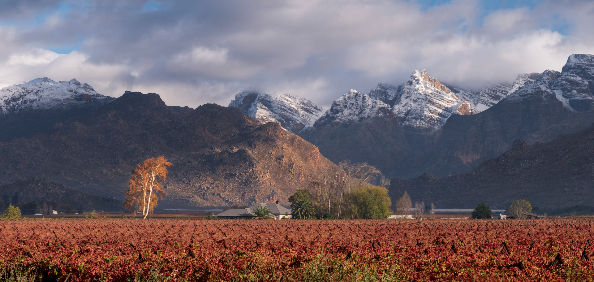 Autumn In The Hex River Valley
