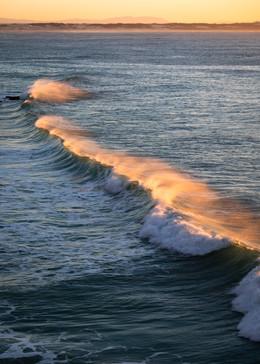 Arniston Golden Waves