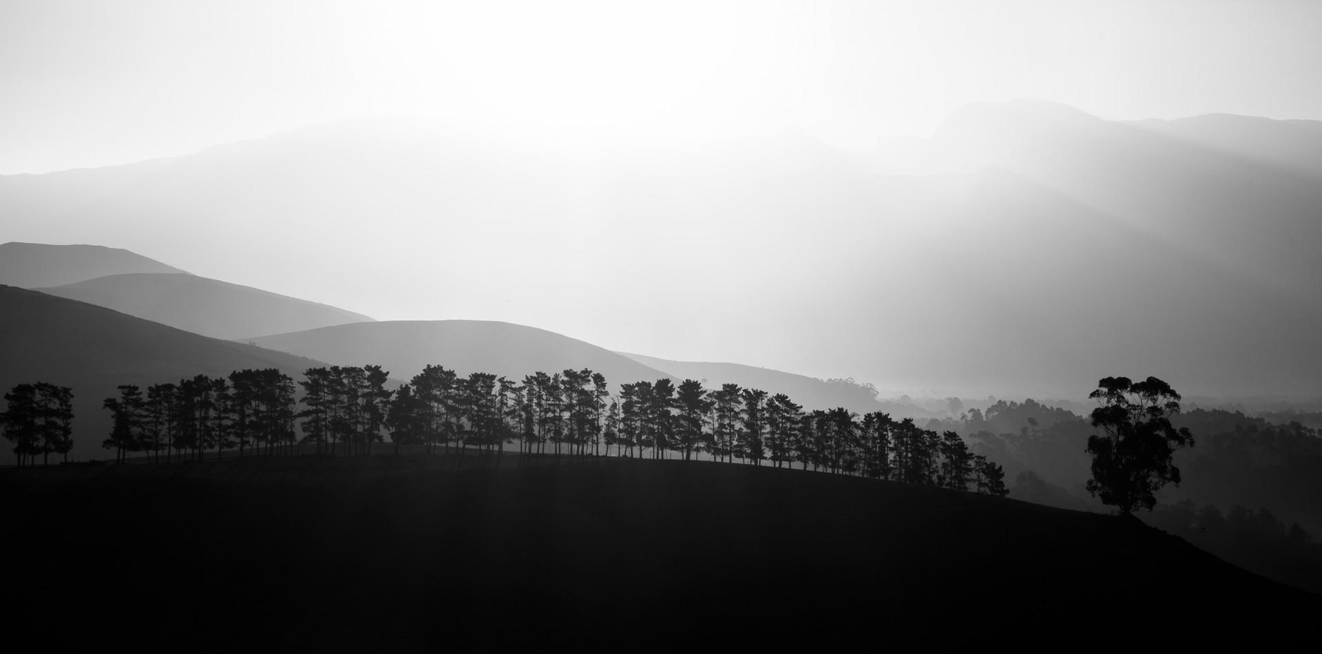 Greyton Panoramic