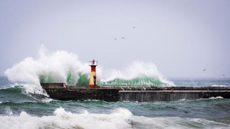 Kalk Bay Waves 1.