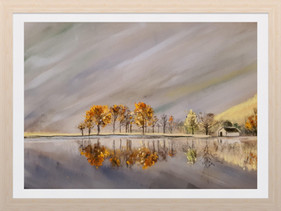 Trees and Reflections, Buttermere.