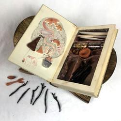 Magic Book - Forage
