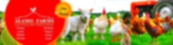 New Logo for website.JPG