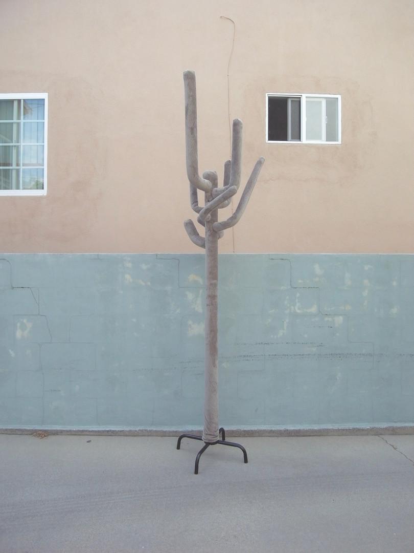 hat stand cactus