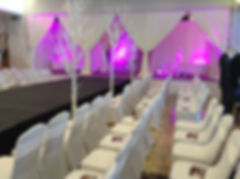 Fashion Show Draping, Winter Trees Hire, Chair Covers, Furniture Hire