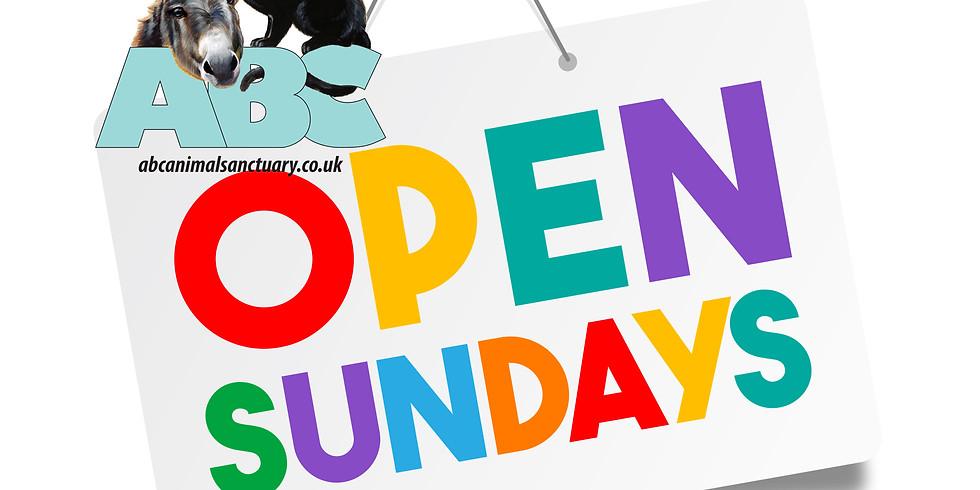 Open Sunday, September 2020