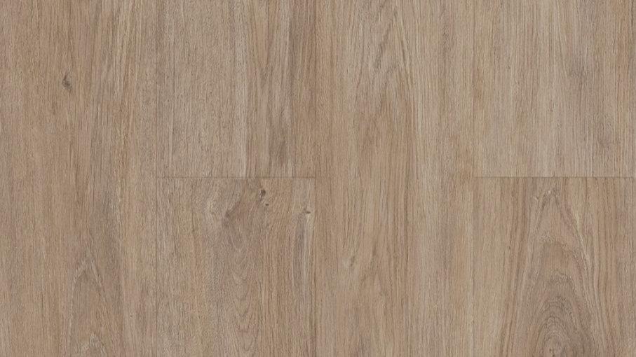 TWS217 DE Essence Oak
