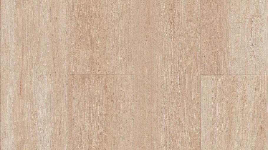 TWS220-12 DE Syrup Oak