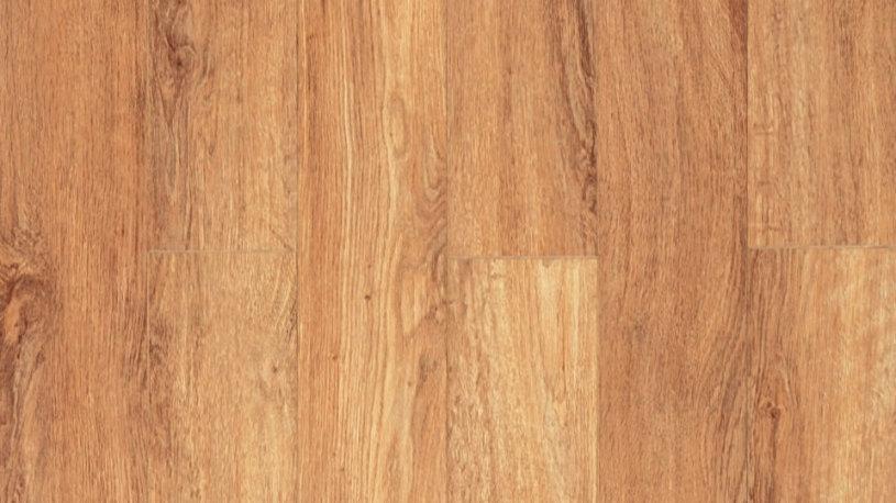 Vespucci Oak, O 121