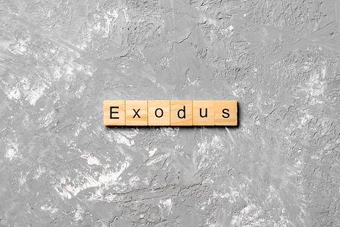 exodus word written on wood block. exodu
