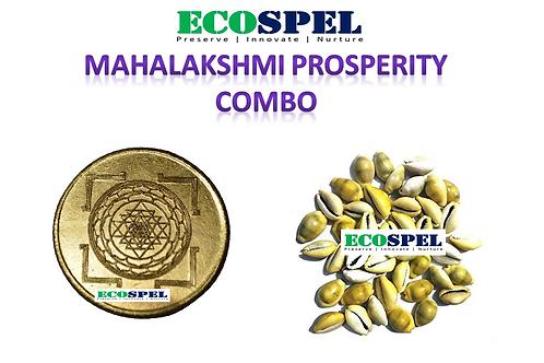 Elegance Central Mahalakshmi Prosperity Combo | Mahalakshmi Coin & 31 Pcs Cowrie