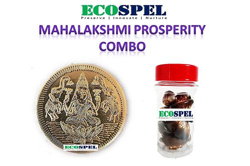 Elegance Central Mahalakshmi Home Prosperity Combo |