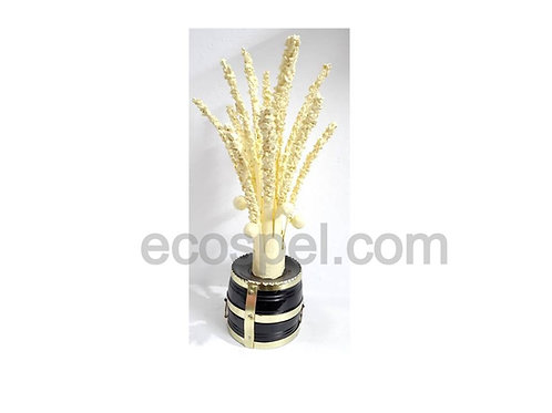 Kerala Traditional Coconut Flower with Vessel |