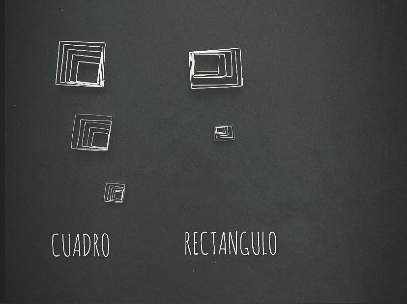 CUADRADO- RECTANGULO