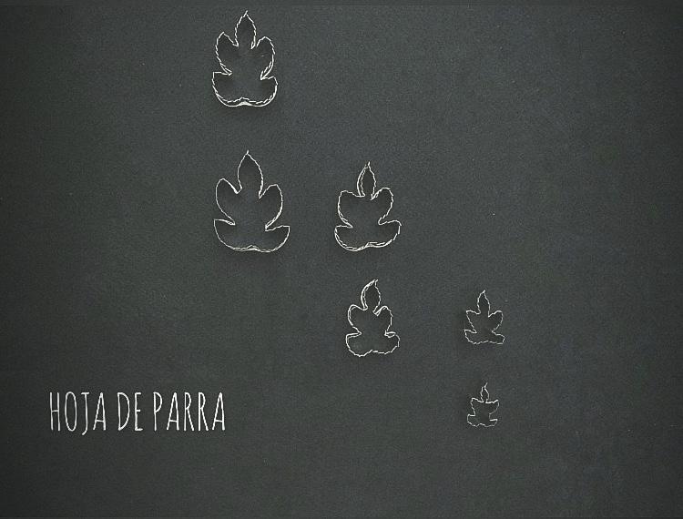 HOJA DE PARRA