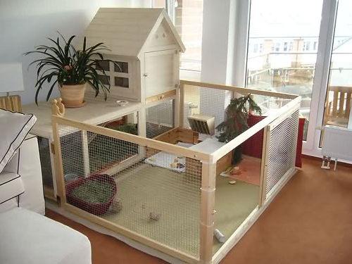 indoor-cage-with-playpen.jpg