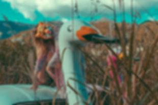 flamingo-49.jpg