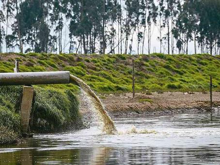 La contaminación de la aguas