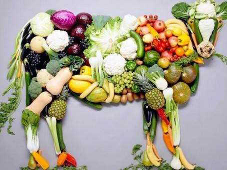La comida vegana puede salvar al planeta, a la humanidad y a los ecosistemas