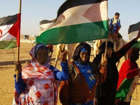 La República Árabe Saharaui Democrática, uno de los países más jóvenes, conócelo.