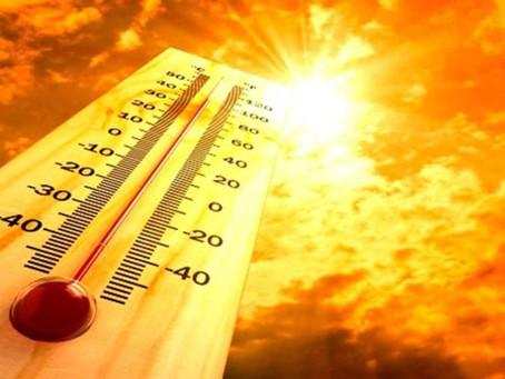 Cambio climático, olas de calor e incendios forestales