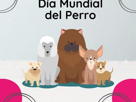 Día Mundial del Perro: 21 de julio