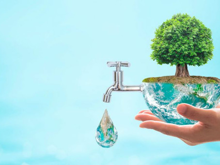 El Agua cotiza en Wall Street
