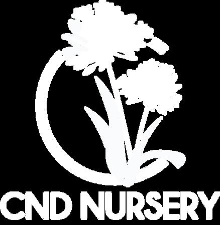 CND Logo_.png