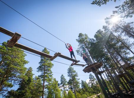 Zipline og høydepark