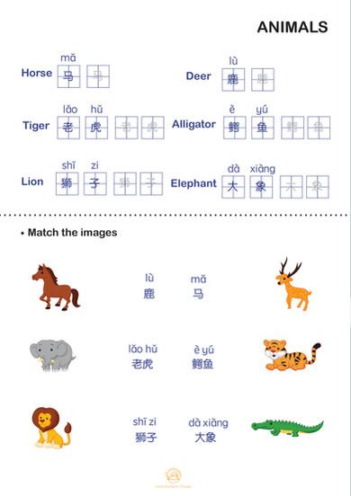 ANIMALS: Match the Animals 2