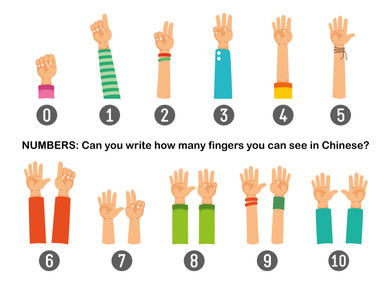 NUMBERS: Count how many fingers you can see