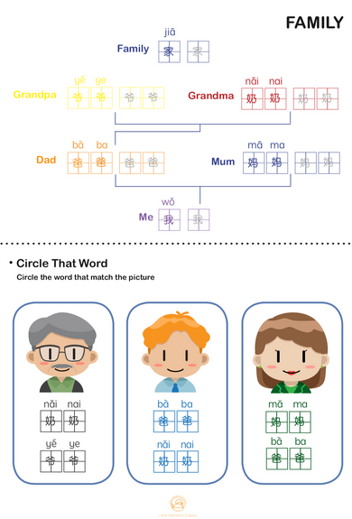 FAMILY: Circle the right words to the pictures