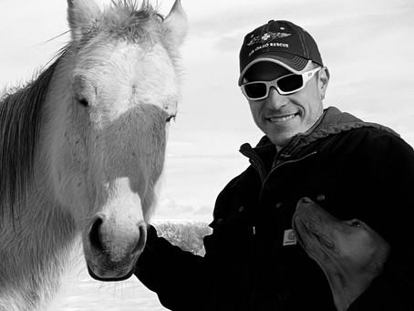 Humans & Horses