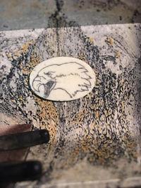 scrimshaw aigle Oneida