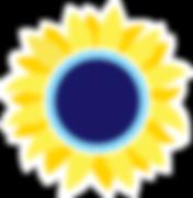 SunflowerEdge.png