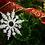 Thumbnail: Copos de nieve x4