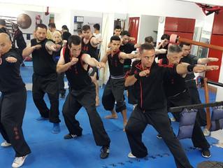 Seminario Internacional Shifu Joao Chasse